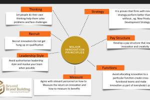 Major Innovation Principles for an effective Brand Management